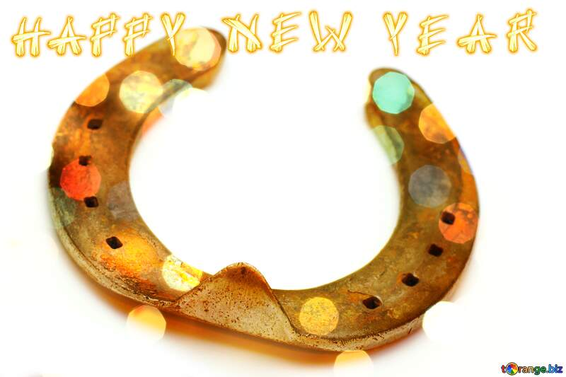 Good luck  horseshoes happy new year №16781