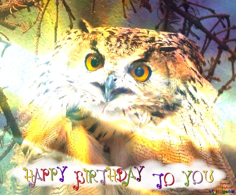 Owl happy birthday card №46063