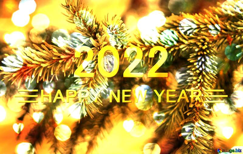 Happy New Year 2012  branches spruce bokeh lights background №419