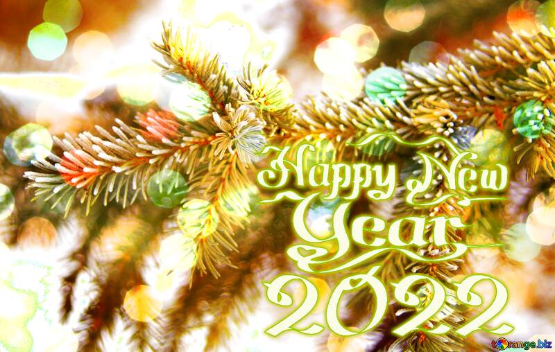 Happy New Year 2012  spruce branches №419