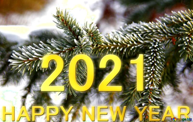 Happy New Year 2012  spruce branches Shiny lettering gold №419