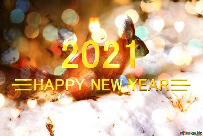 Squirrel happy new year 2021 background №4141