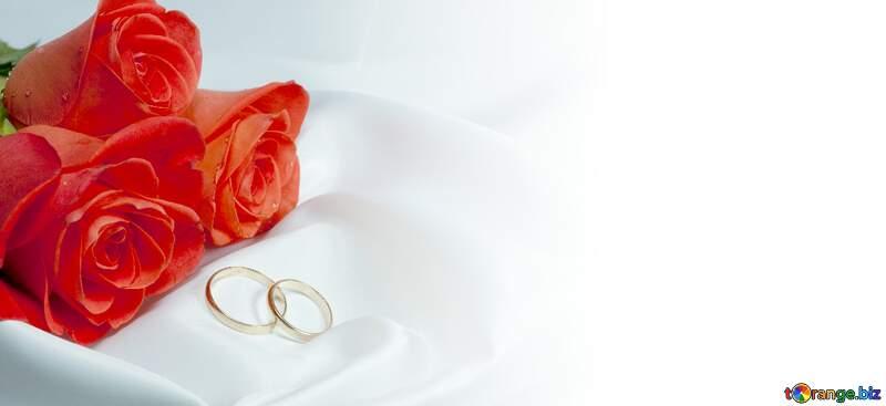 Background wedding Invitation postcards. №7235