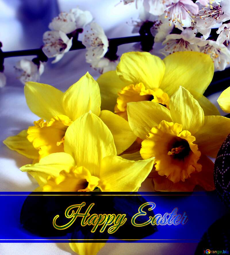 Happy Easter №29968