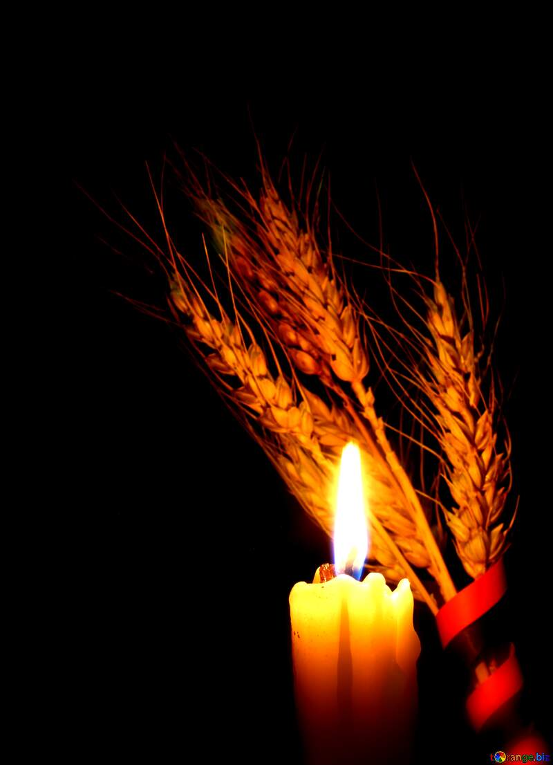 candle and wheat №37793