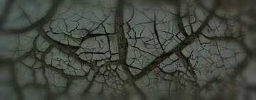 Die Wirkung des viel dunklen. Sehr klare Farben. Unschärfe Rahmen. Bruchstück.