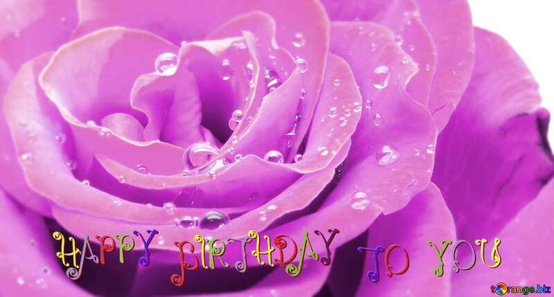 happy birthday card Rose flower №17097