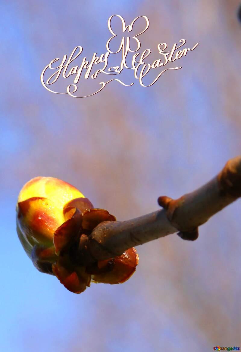 Sprig Chestnut spring happy easter card №1772