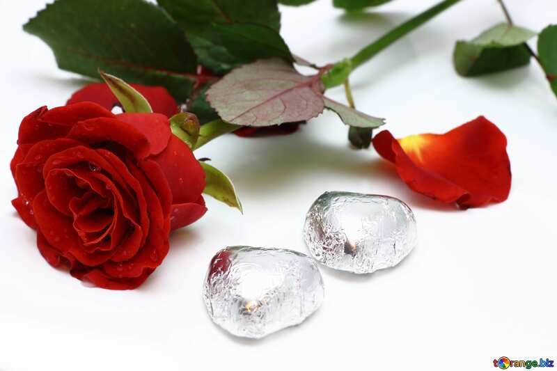Two chocolates candy and roses flower №16848