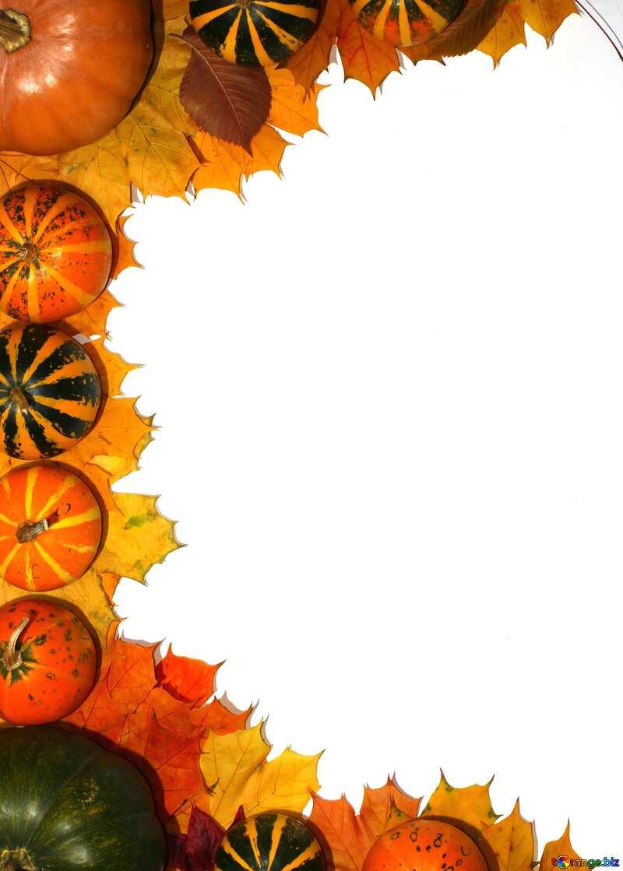 Autumn frame border pumpkins №35178