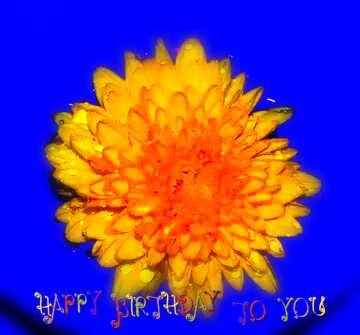 Die Wirkung des dunklen. Sehr klare Farben. Unschärfe Rahmen. Postkarte Alles Gute zum Geburtstag in Englisch.