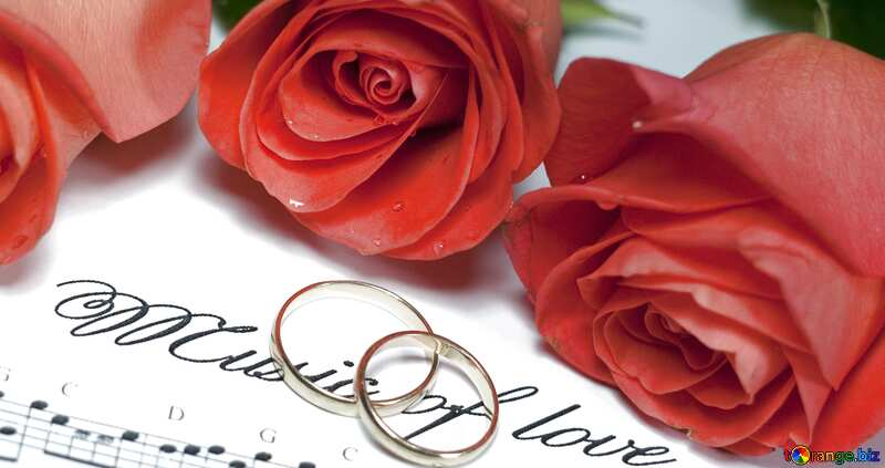 Roses two rings letter melody №7239