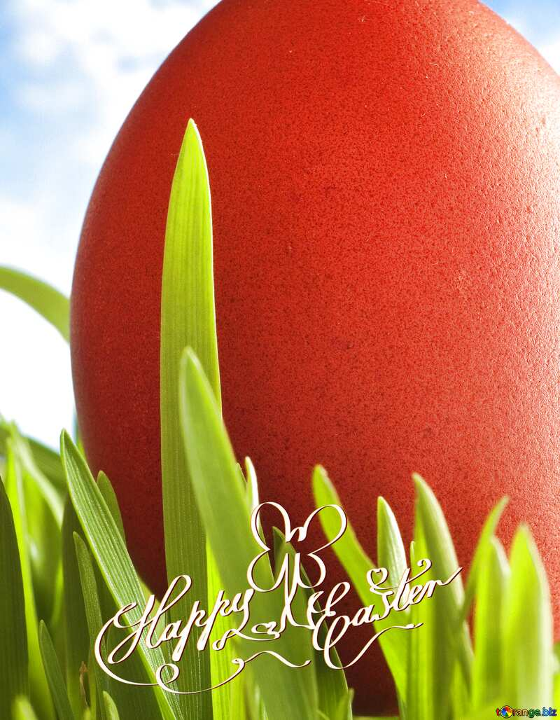 Happy  easter card №8179