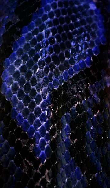 The effect of the hard dark. The effect of stained blue. Fragment.