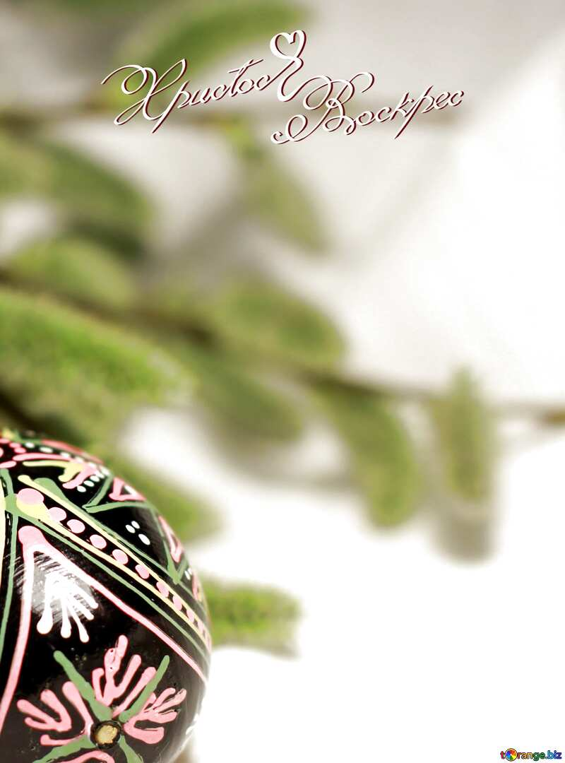Ukrainian Easter Egg with willow branches №29564
