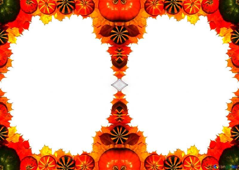 pumpkins Autumn blank №35178