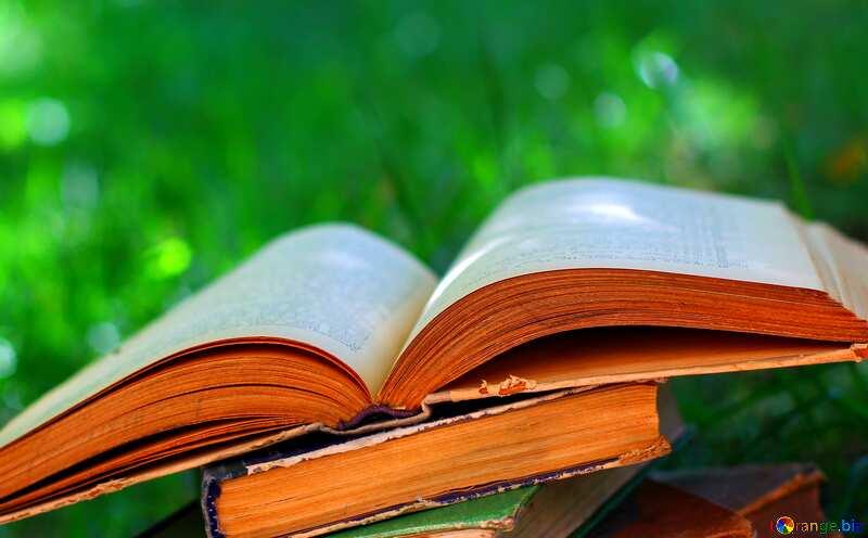 Reading book №34888