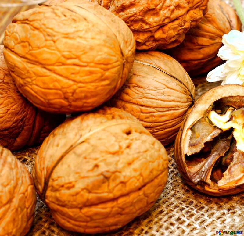 Walnuts №46225