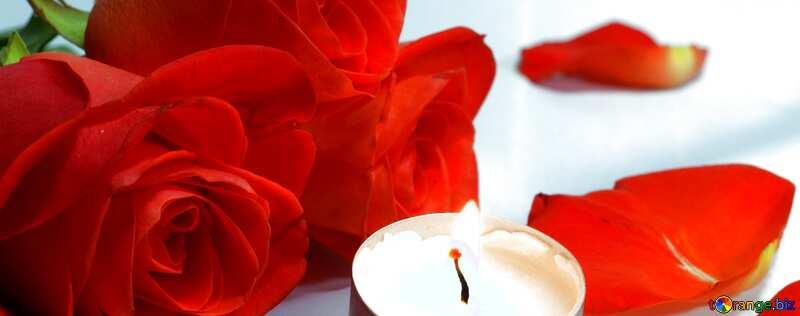 Обложка. Романтическая ночь. Постель, розы и лепестки, свечи.. №7275