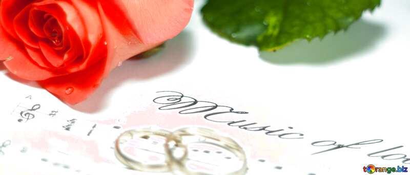 Обложка. Роза, свадебные кольца и ноты. Музыка для влюбленных.. №7230