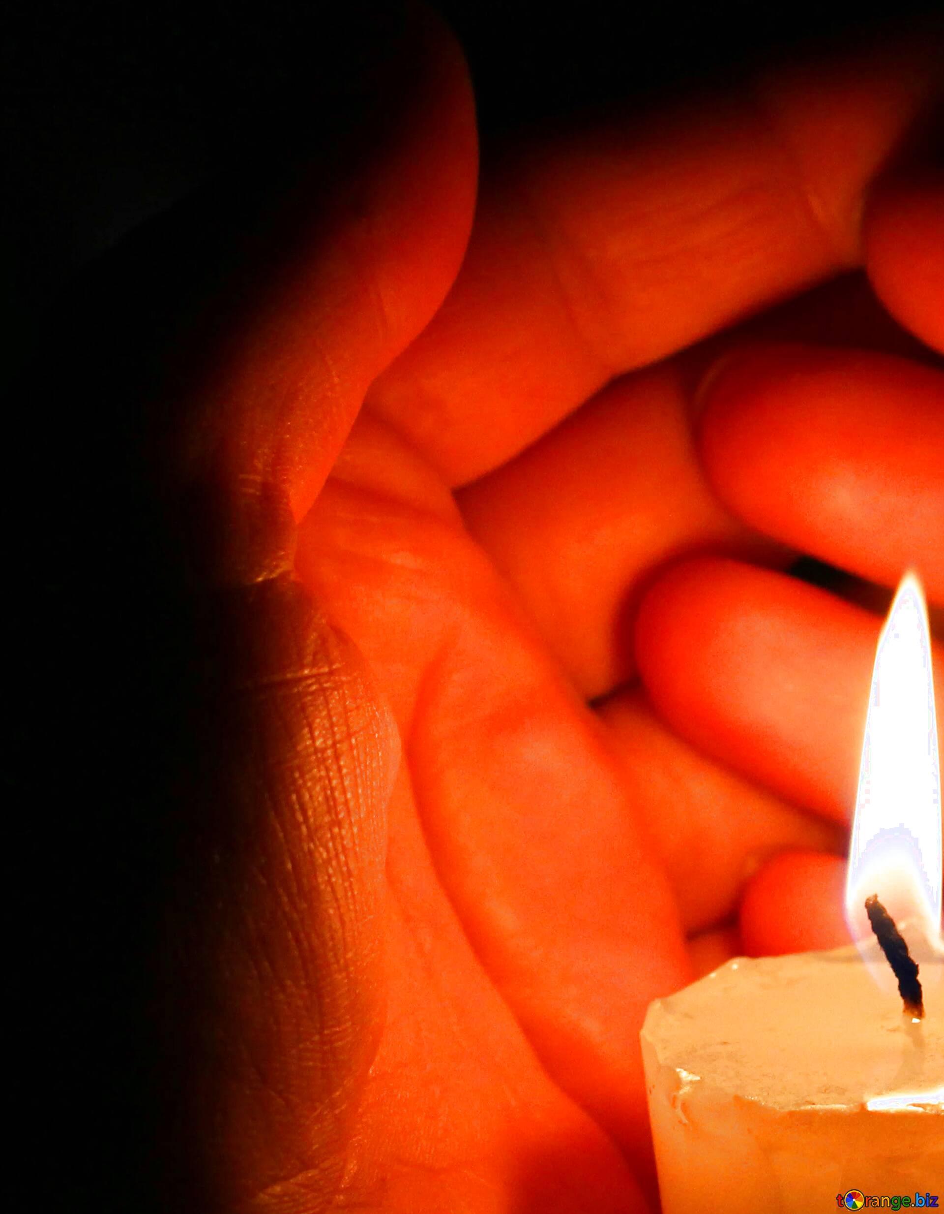 картинки свеча памяти животным брюки