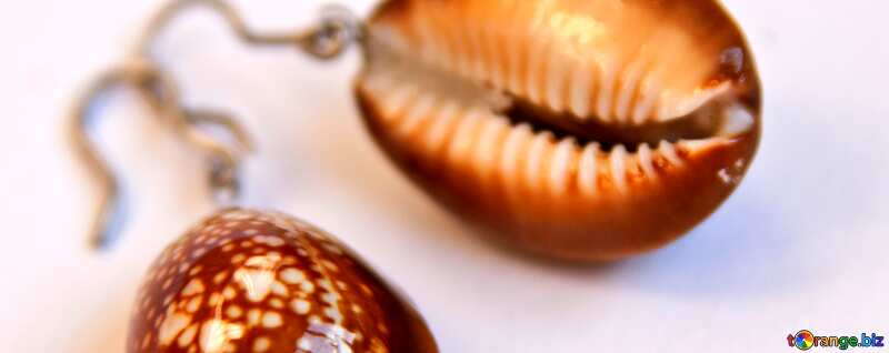 Abdeckung. Frauen Ohrringe aus Muscheln.. №2070