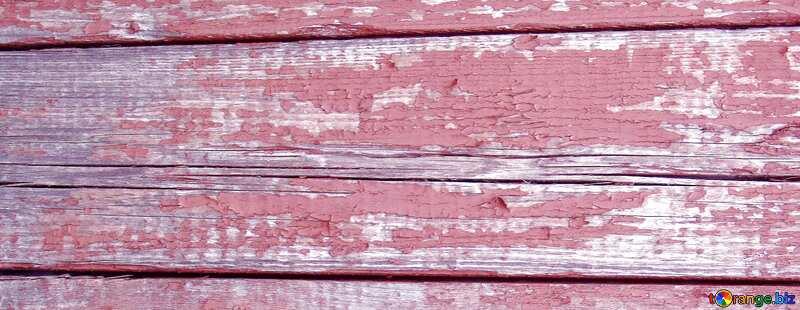 Textur. Schalenfarbe auf dem Baum.. №5348