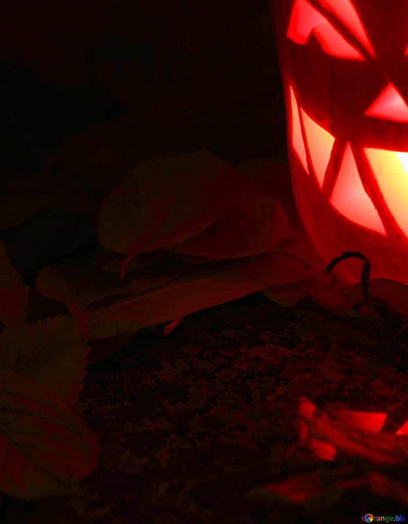 Halloween black background №24263
