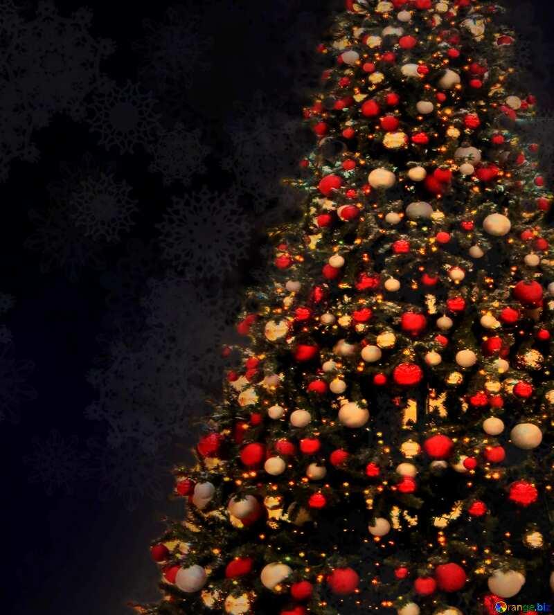 Bild für Profilbild. Weihnachtsbaum. №40739