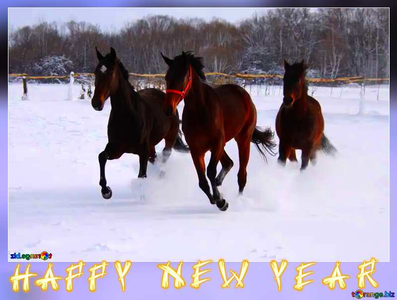 Three horses in the snow happy new year  card frame №3981