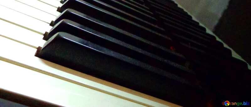 Couverture. Instrument de musique royale. №42950