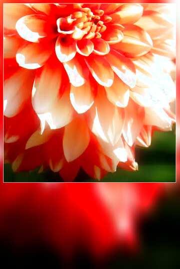 The effect of light. Vivid Colors. Blur dark frame. Fragment.