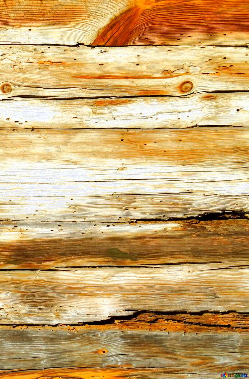 Texture of old wood monochrome №28600