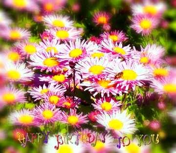 Die Wirkung von Licht. Sehr klare Farben. Unschärfe Rahmen. Bruchstück. Postkarte Alles Gute zum Geburtstag in Englisch.