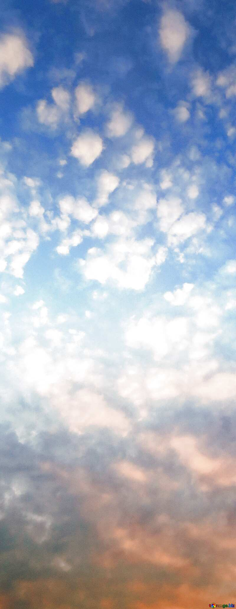Beautiful sky vertical banner background №22651