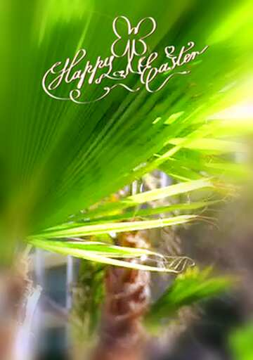 The effect of light. Vivid Colors. Blur frame. Fragment. Happy Easter card.
