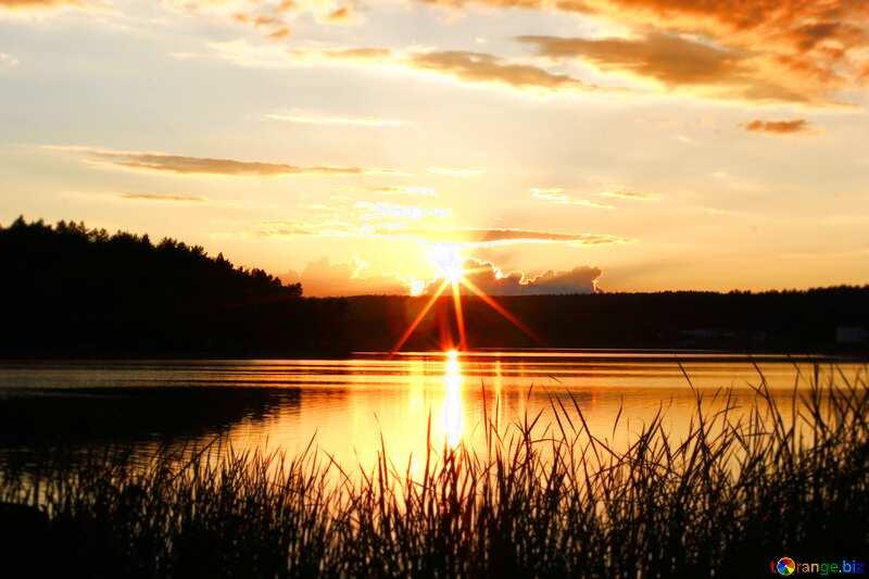 Evening lake landscape  №36480