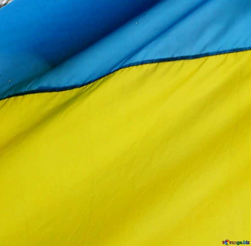 Украина куст спирея фото заведении