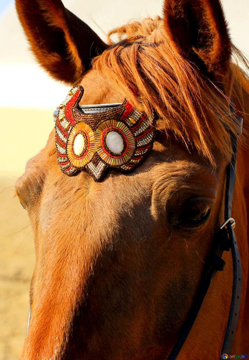 Handmade Headstall Decorations №49243