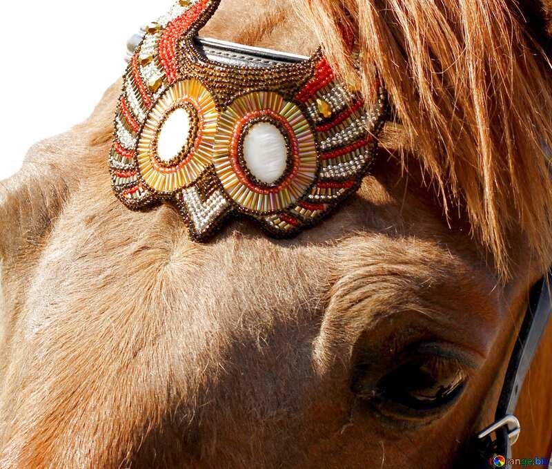 Handmade  Horse Jewelry  №49243
