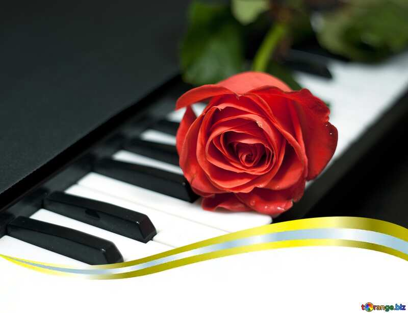 rose on musical instrument №7198