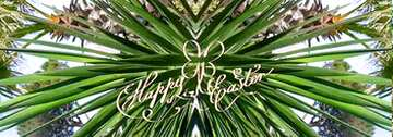 The effect of light. Vivid Colors. Fragment. Template. Happy Easter card.