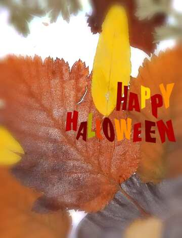 The effect of light. Very Vivid Colours. Blur frame. Fragment. Happy halloween.