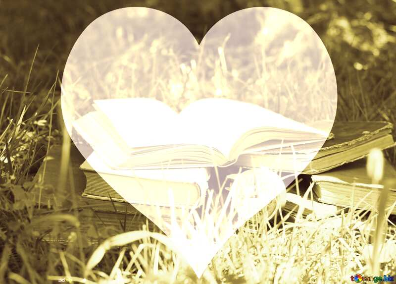 Book on grass  love heart frame background №34864