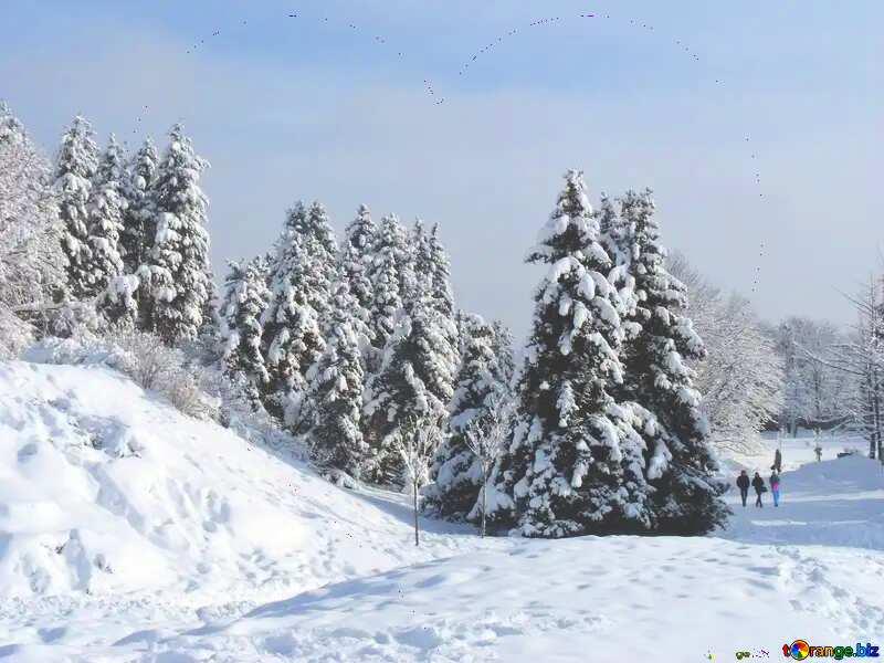 coeur rouge sur paysage neige №10526