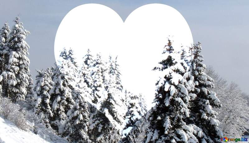 A white big heart and pine trees covered with snow №10526