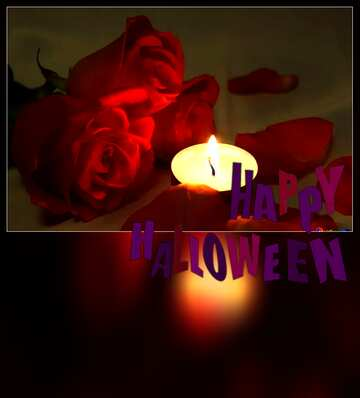 The effect of the dark. Very Vivid Colours. Blur dark frame. Happy halloween.